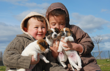 Brother and sister holding three white and brown puppies